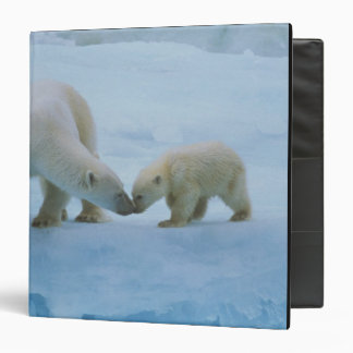 North America, Canadian Arctic. Polar bear and Binders