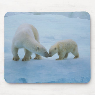 North America, Canadian Arctic. Polar bear and Mouse Pad