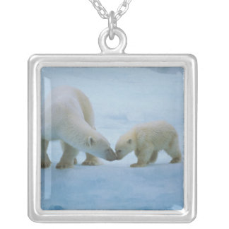 North America, Canadian Arctic. Polar bear and Necklaces