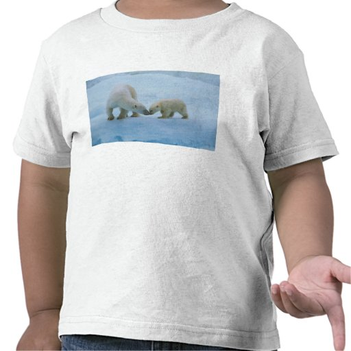 North America, Canadian Arctic. Polar bear and Tee Shirt