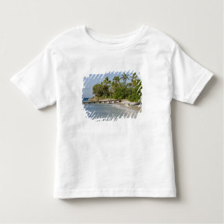North America, Caribbean, Dominican Republic. Toddler T-shirt