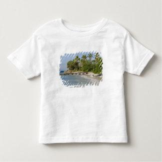 North America, Caribbean, Dominican Republic. Toddler T-shirt