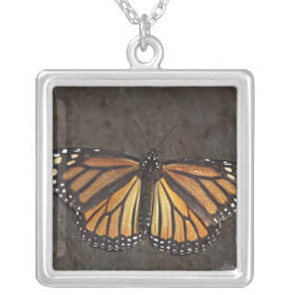 North America, Mexico, Angangueo. An exhausted Square Pendant Necklace