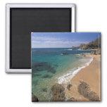 North America, Mexico, Baja California Sur, 2 Inch Square Magnet