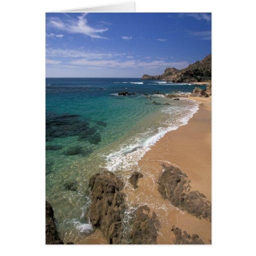 North America, Mexico, Baja California Sur, Cards