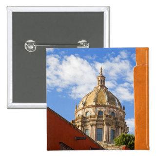 North America, Mexico, Guanajuato state, San 2 Button
