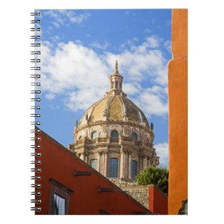 North America, Mexico, Guanajuato state, San 2 Notebook