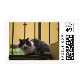 North America, Mexico, San Miguel de Allende. Stamp