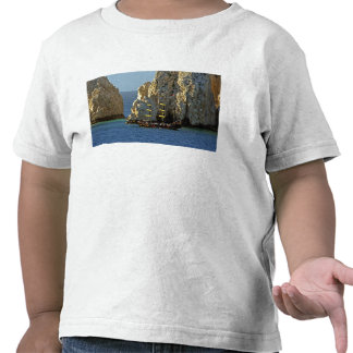 North America, Mexico, State of Baja T Shirt
