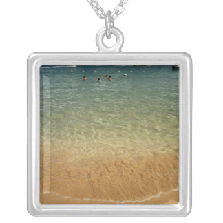 North America, Mexico, State of Guerrero, Ixtapa Silver Plated Necklace
