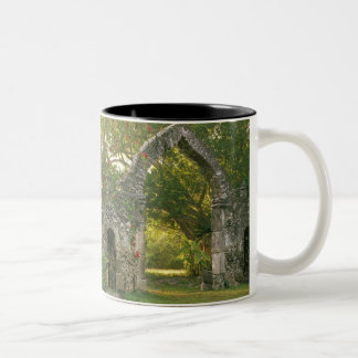 North America, Mexico, Yucatan Peninsula, Two-Tone Coffee Mug
