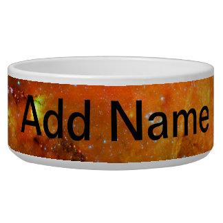 North America Nebula Dog Water Bowls