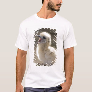 North America, Northwestern Hawaiian Islands, T-Shirt