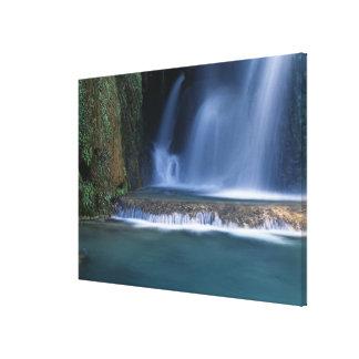 North America, U.S.A., Arizona, Havasu Canyon, 2 Canvas Print