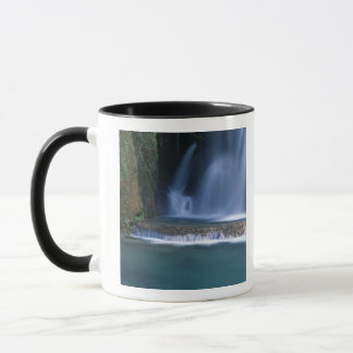 North America, U.S.A., Arizona, Havasu Canyon, 2 Mug