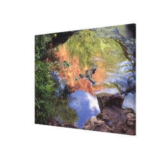 North America, U.S.A., Arizona, Havasu Canyon, 3 Canvas Print