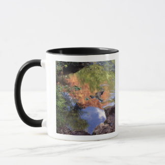North America, U.S.A., Arizona, Havasu Canyon, 3 Mug