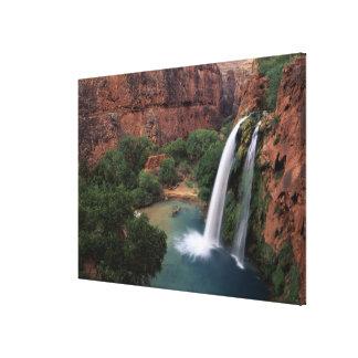 North America, U.S.A., Arizona, Havasu Canyon, Canvas Print