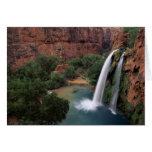 North America, U.S.A., Arizona, Havasu Canyon, Greeting Card