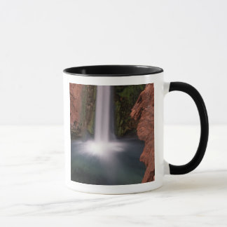 North America, U.S.A., Arizona, Havasu Canyon, Mug