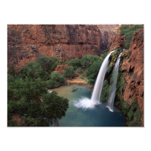 North America, U.S.A., Arizona, Havasu Canyon, Photographic Print