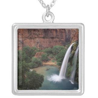 North America, U.S.A., Arizona, Havasu Canyon, Silver Plated Necklace