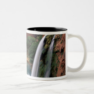 North America, U.S.A., Arizona, Havasu Canyon, Two-Tone Coffee Mug
