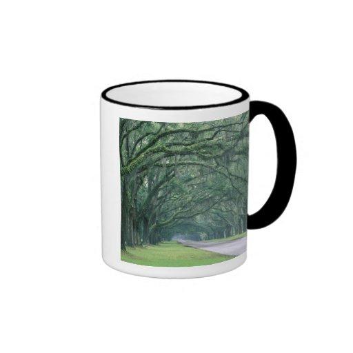 North America, U.S.A., Georgia, Savannah, Ringer Coffee Mug
