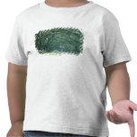 North America, U.S.A., Georgia, Savannah, Shirt