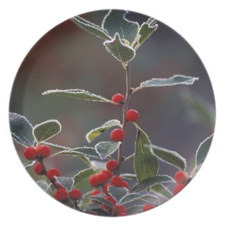 North America, United States, New England. Holly 2 Melamine Plate