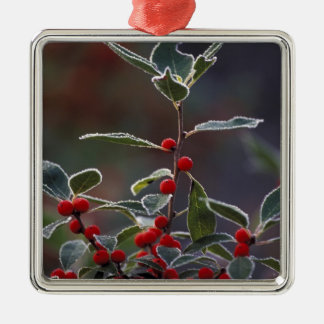 North America, United States, New England. Holly 2 Metal Ornament