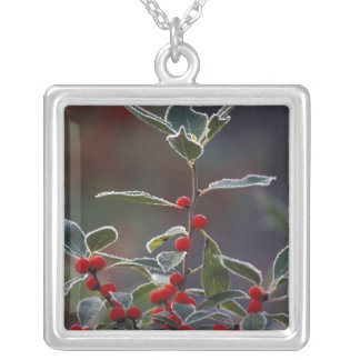 North America, United States, New England. Holly 2 Necklace