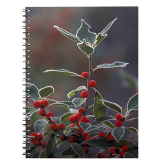 North America, United States, New England. Holly 2 Spiral Notebook