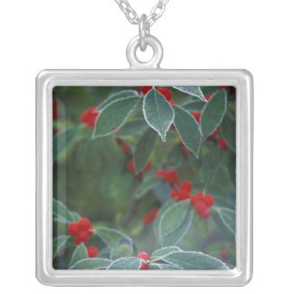 North America, United States, New England. Holly Square Pendant Necklace
