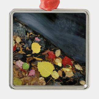 North America, US, ME, A stream in fall. Ornaments