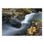 North America, US, ME, A stream in fall. Photo Print