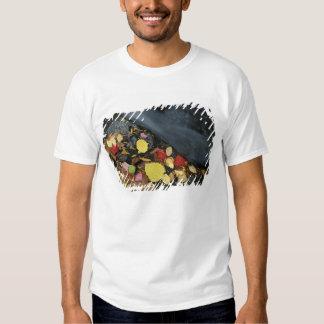 North America, US, ME, A stream in fall. Shirt