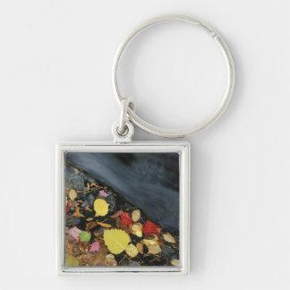 North America, US, ME, A stream in fall. Silver-Colored Square Keychain