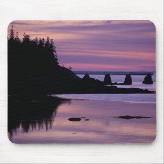 North America, US, ME, Isle Au Haut. Duck Mouse Pad