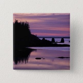 North America, US, ME, Isle Au Haut. Duck Pinback Button