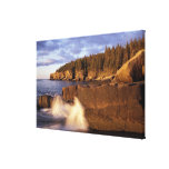 North America, US, ME, The rocky Maine coast. Stretched Canvas Prints