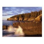 North America, US, ME, The rocky Maine coast. Postcard