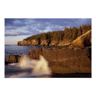 North America, US, ME, The rocky Maine coast. Poster