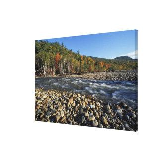 North America, US, NH, A cobble beach on the Canvas Print