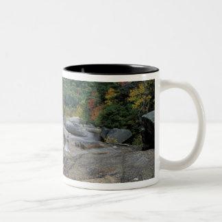 North America, US, NH, Fall foliage in New Two-Tone Coffee Mug