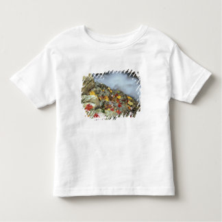 North America, US, NH, Fall in New England. Toddler T-shirt
