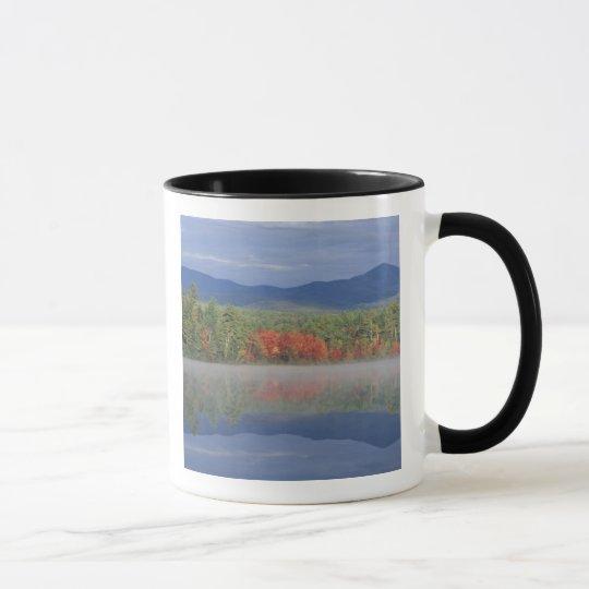 North America, US, NH, Fall reflections in Mug