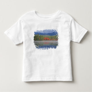 North America, US, NH, Fall reflections in Toddler T-shirt