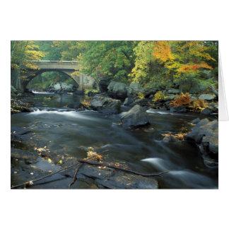 North America, US, NH, The bridge at Packers Card