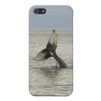 North America, USA, AK, Inside Passage. Humpback Cover For iPhone SE/5/5s